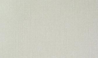 U561マニエラ・パールホワイト