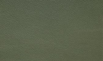 X115スモークグリーン