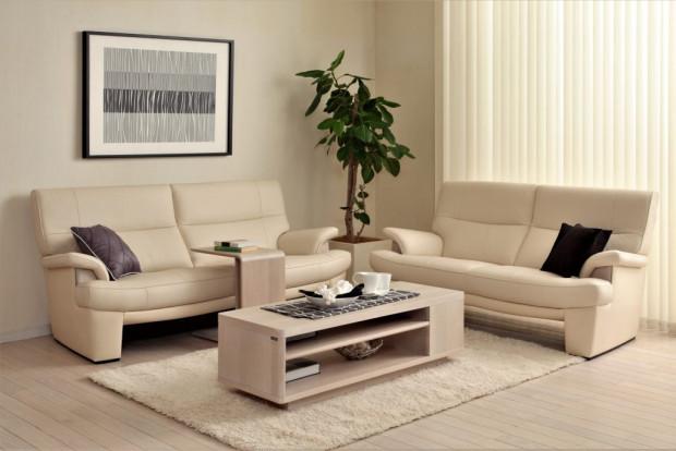 お部屋広々。スマートデザインの張り込みソファ/Z170モデル