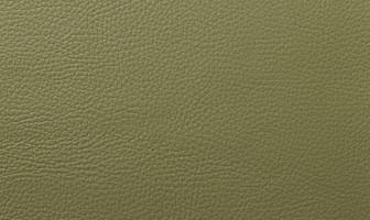 X558グラスグリーン